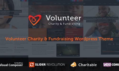 Volunteer - Charity/Fundraising Wo...
