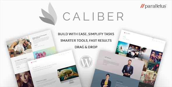 Responsive WordPress Theme - Caliber